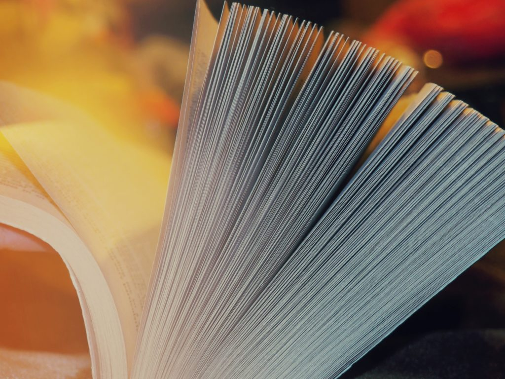 Páginas de un libro  Anastasia Zhenina