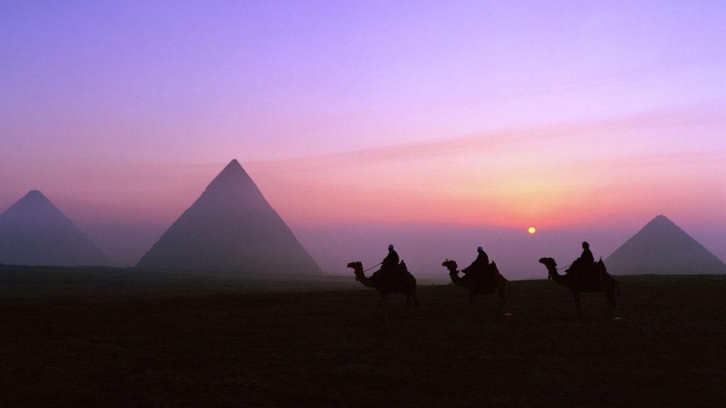visa para Egipto, camellos